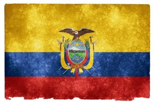 CriptoNoticias Ecuador Ordena Adoptar Moneda Digital