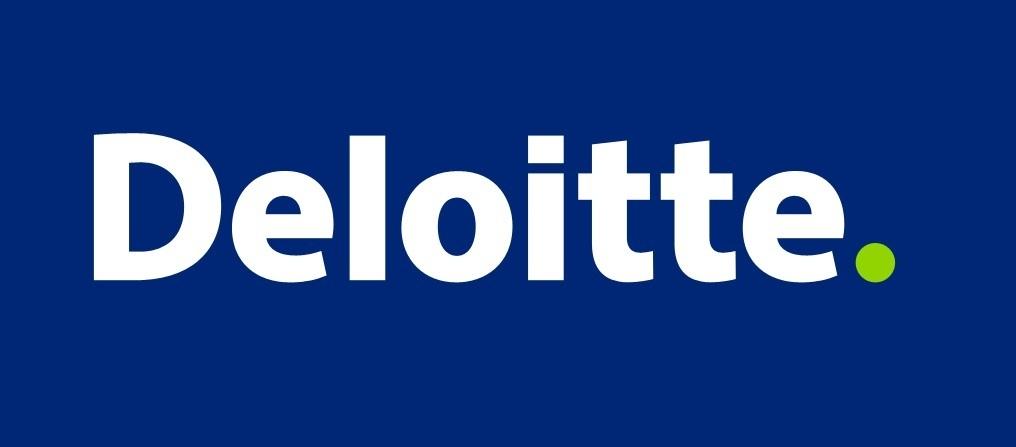 CriptoNoticias-Deloitte-Rubix-Plataforma-Software-Blockchain