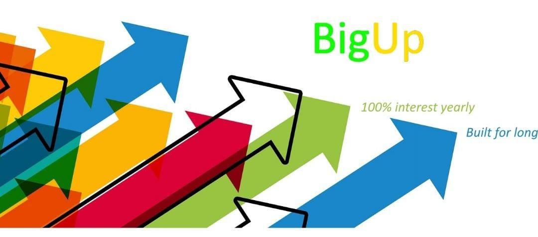 BigUp Blockchain Criptodivisa