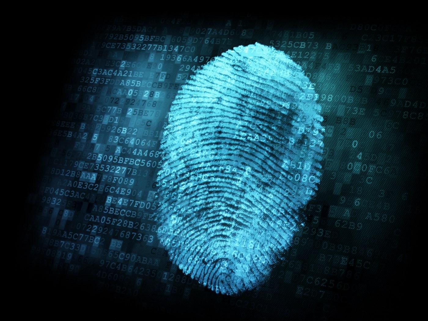 Rastreo Transacciones Blockchain Crimen Cibernetico