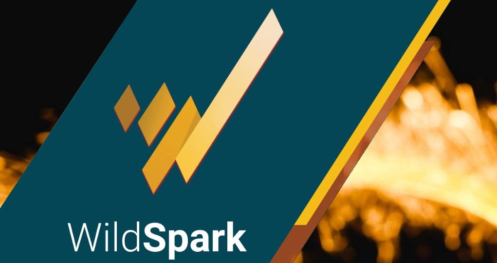 Wildspark Blockchain Contenidos