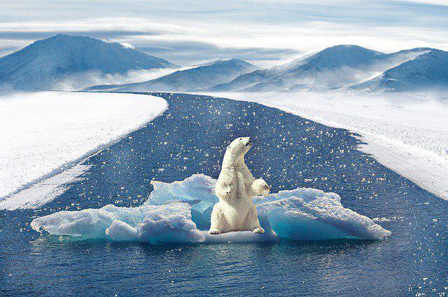 cambio-climatico-tecnologia-dlt