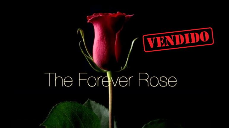 Forever-Rose-blockchain-vendida