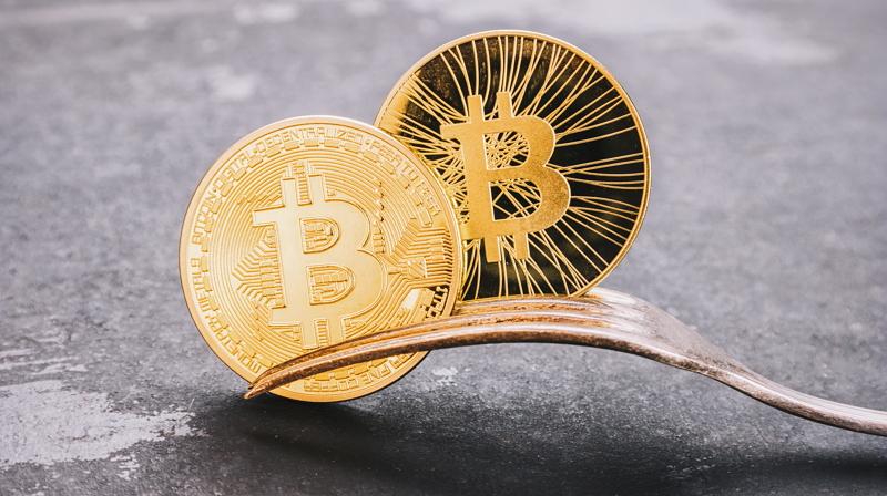 Diet-Fork-Bitcoin-bifurcación