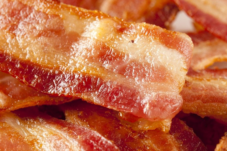 bacon-tocineta-recompensa