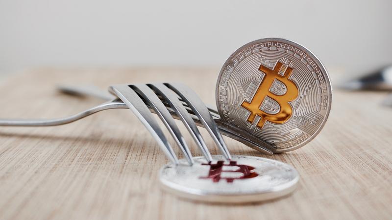 Semana-bifurcación-Bitcoin-Cash