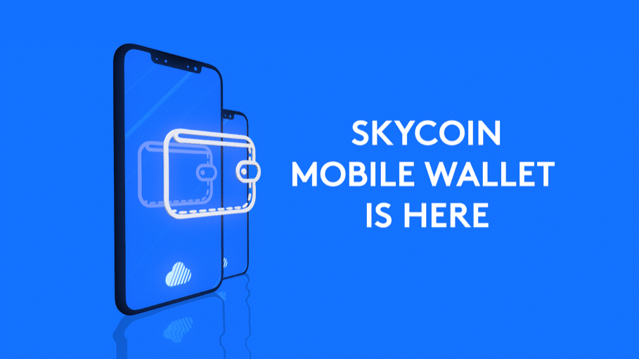 Skycoin Monedero Blockchain