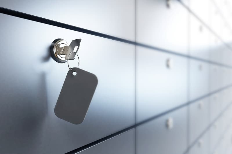criptomonedas-carteras-almacenamiento-dash