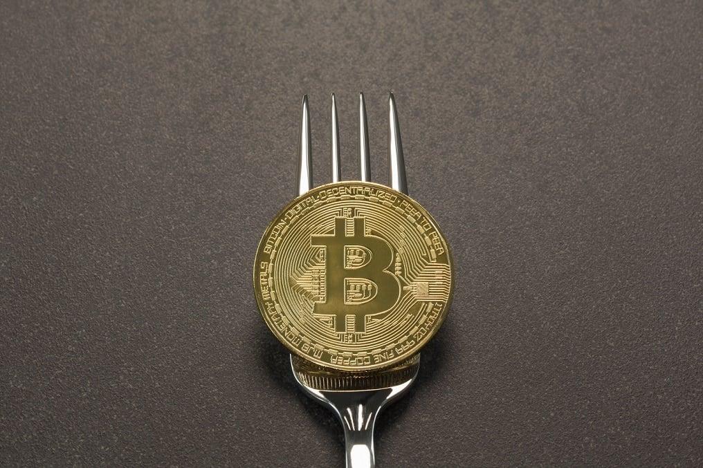 bifurcacion-monederos-bitcoin cash-criptomoneda