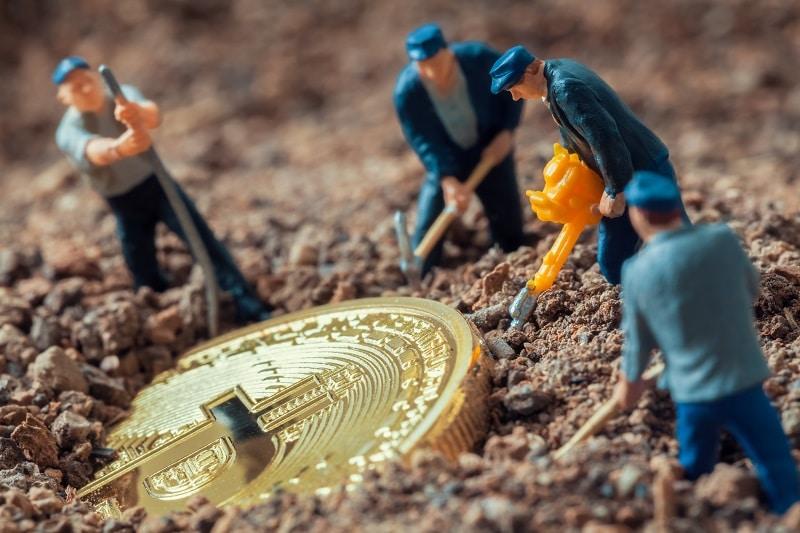 sharkpool-bitcoin-cash-fork