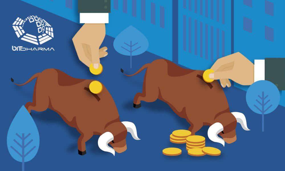 """""""asesoría en criptomonedes y precio del bitcoin"""""""
