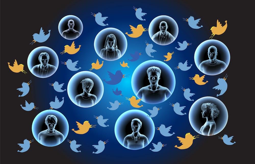 Intereses Twitter BitcoinCash Ripple