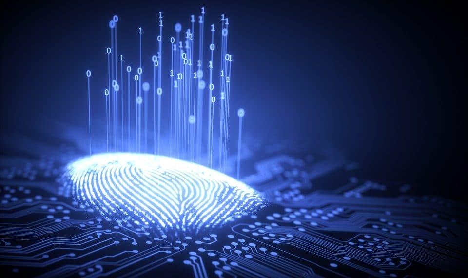 código abierto identidad GitHub prueba