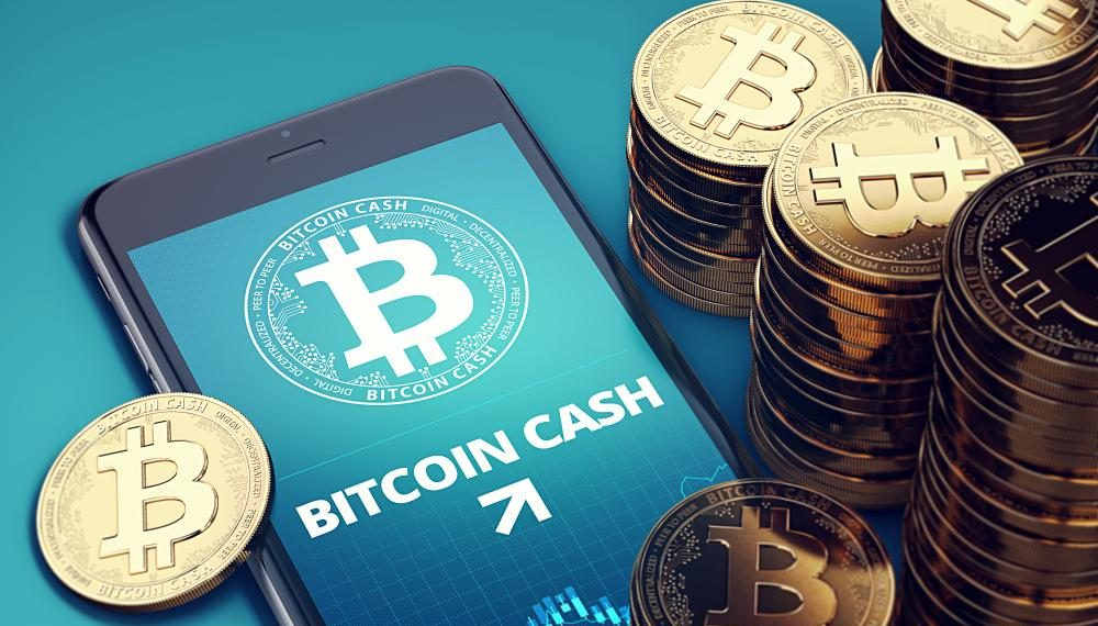 bifurcacion - bitcoin cash