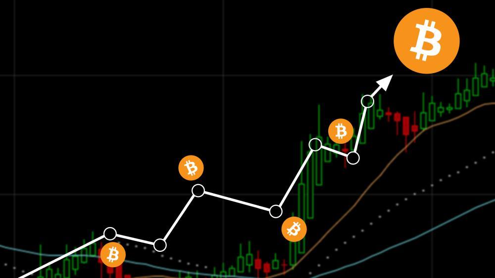 bitcoin - llega - 8000- 10 - meses