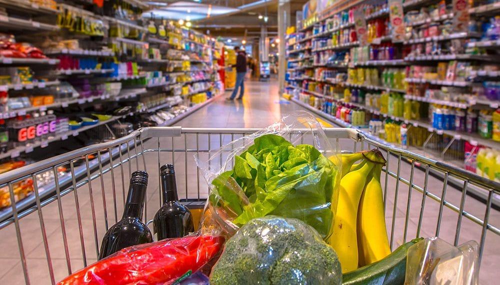 Imagen destacada por  creativenature.nl / stock.adobe.com