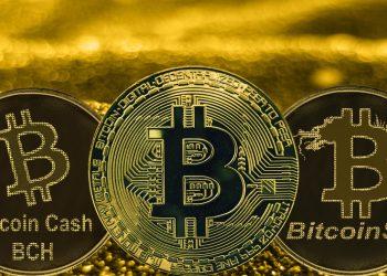 Bitcoin-BCH-BSV-valor-transferencia-red-blockchain-coinmetric