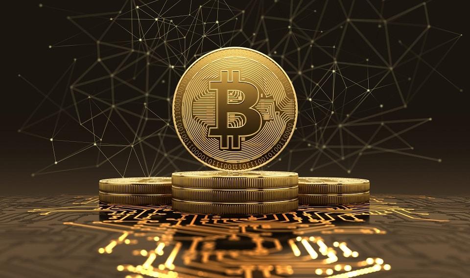 Imagen destacada por iaremenko / stock.adobe.com