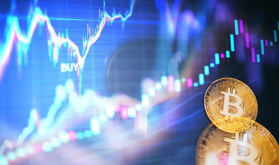 Bitso Traders Alpha Plataforma