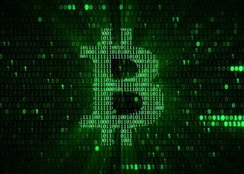 Imagen destacada por donfiore / stock.adobe.com