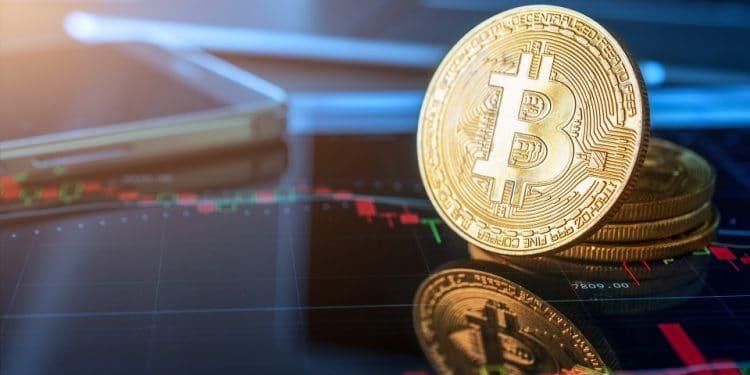 Pantera precio bitcoin