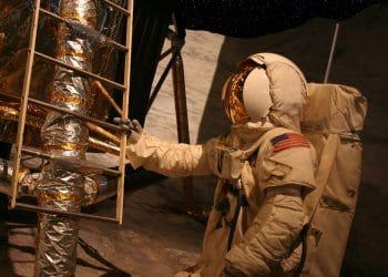 Imagen destacada por Noel Powell / stock.adobe.com