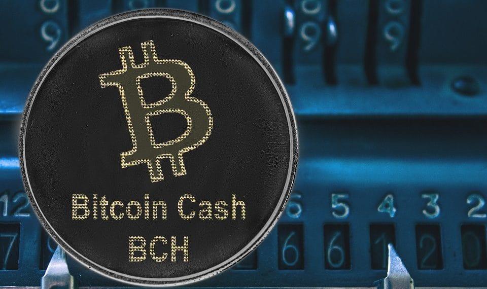Bitcoin Cash dos años