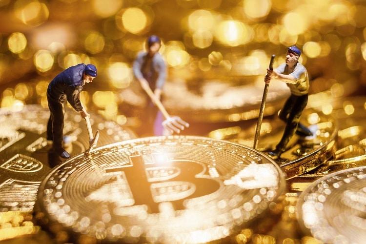 Imagen destacada por nonnie192 / stock.adobe.com