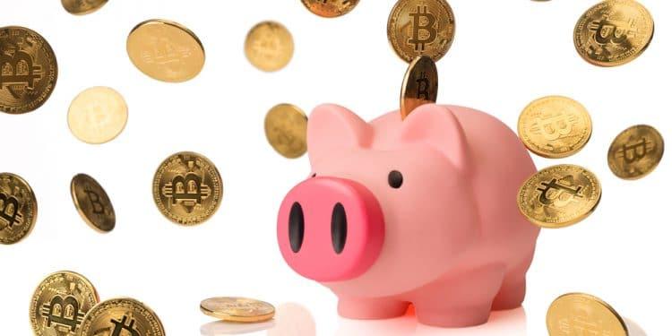 opendime-ahorro-bitcoin-educación