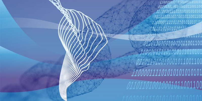 RSK NXTP blockchain latinoamérica