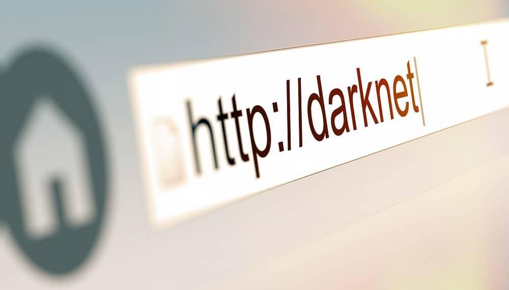 Imagen destacada por Goodpics/stock.adobe.com