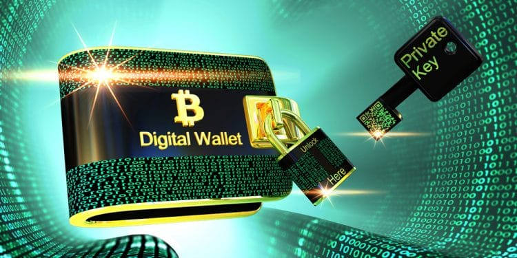 cartera Wasabi bitcoin ronda financiamento venta acciones