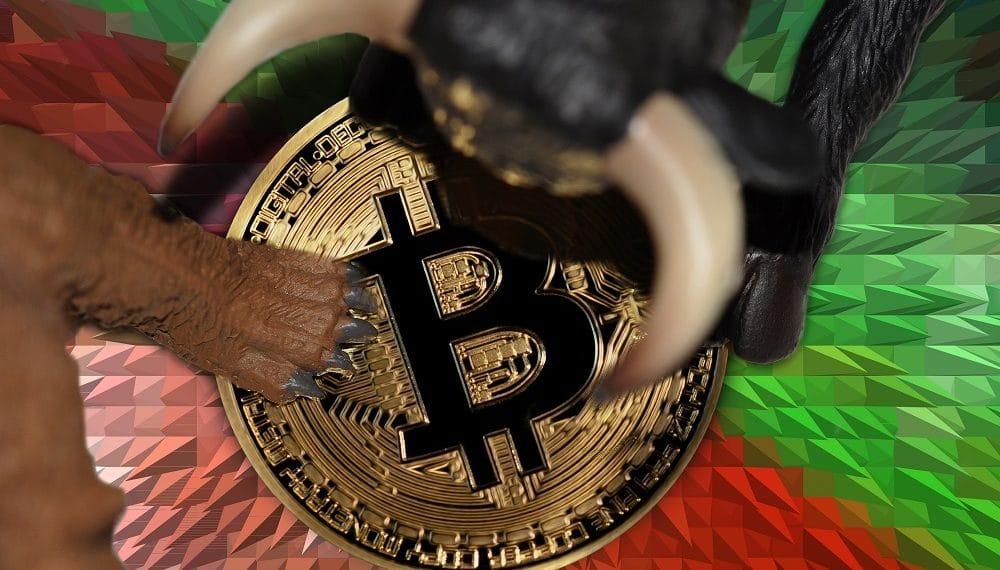 Imagen destacada por mkarco/stock.adobe.com