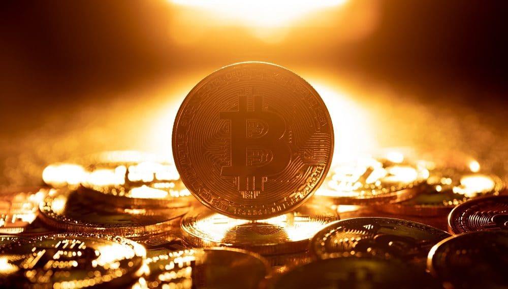 Imagen destacada por pigprox/stock.adobe.com