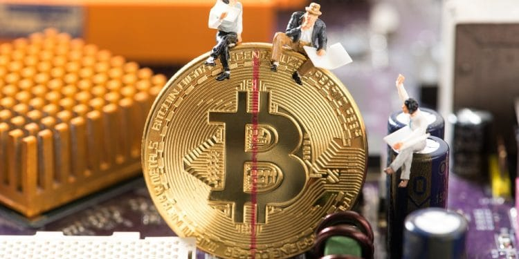 Imagen destacada por kwanchaift/stock.adobe.com