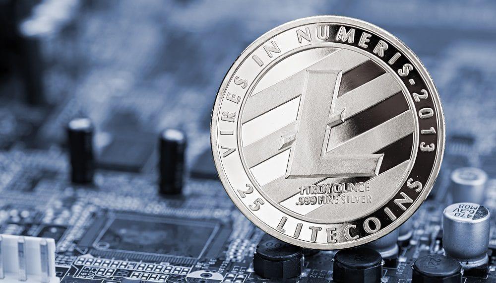 Imagen destacada por stockphoto-graf/stock.adobe.com