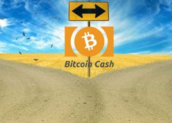bitcoin cahs bifurcación