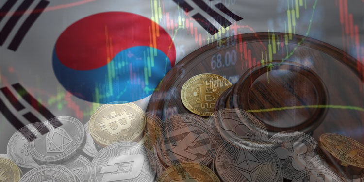 Imagen: collage de CriptoNoticias con imágenes por poopilk y Wit / stock.adobe.com