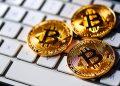 Los desarrolladores dedicados al software de Bitcoin reciben financiamiento de más de 16 empresas. Fuente: stevanovicigor/elements.envato.com