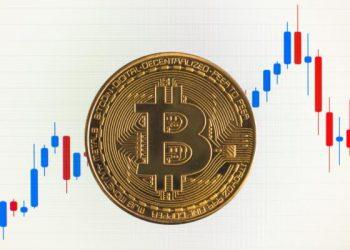 especuladores largo plazo bitcoin