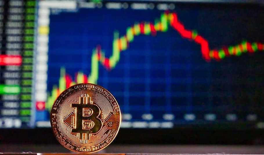 Bitcoin con gráfico de trading al fondo. Imagen por pxfuel.com