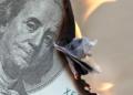 dolar crisis estados unidos