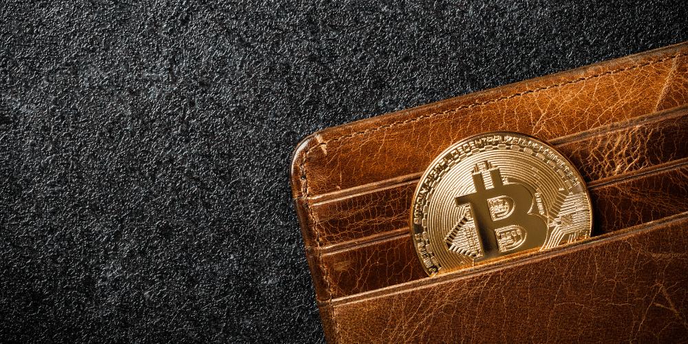 Un monedero con un bitcoin. Fuente:  ff-photo/ Envato Elements