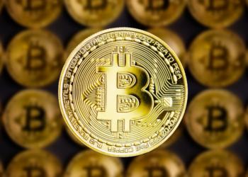 halving bitcoin red estado