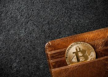 Moneda con el logo de bitcocin colocada dentro de una billetera de cuero. Fuente: ff-photo/Envato Elements