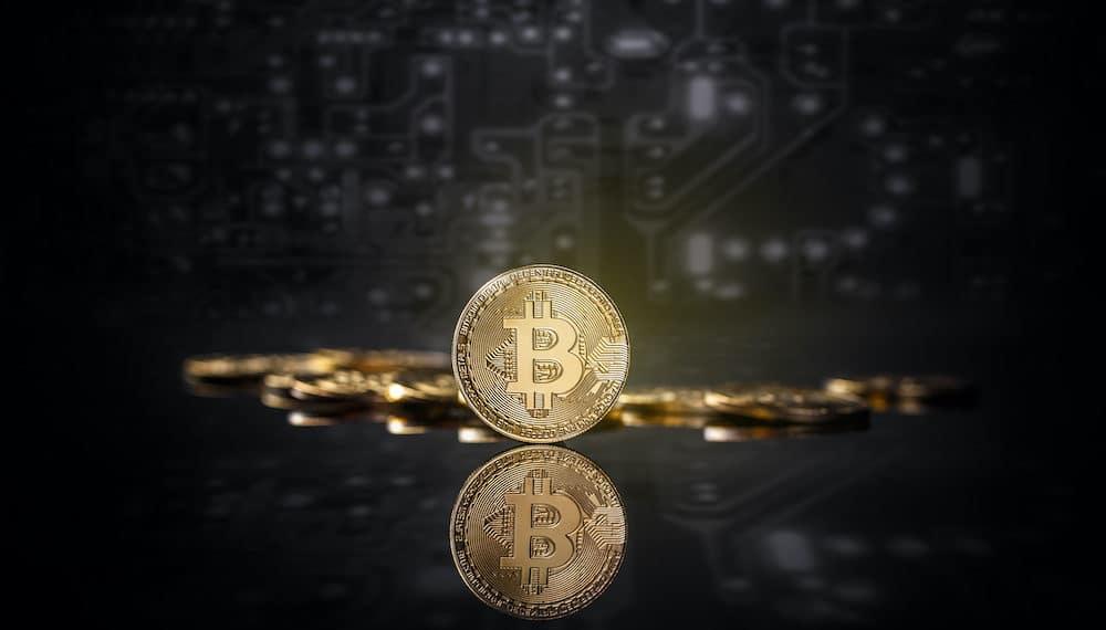 Una moneda física de Bitcoin parada frente a otras y un fondo oscuro de circuito. Fuente: Envato Elements.