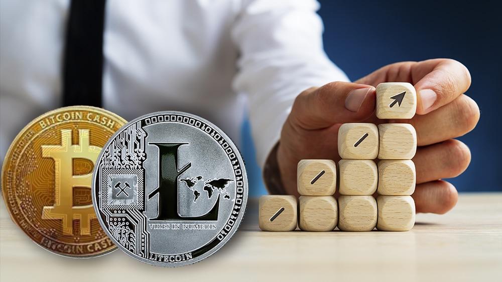 bch criptomonedas negocios