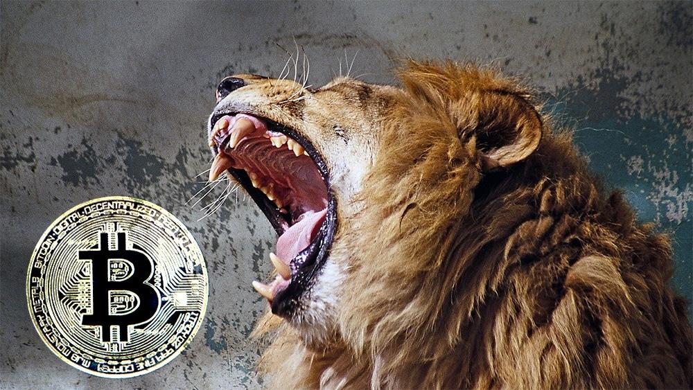 investigación-mercado-casas-cambio-criptomonedas-bitcoin