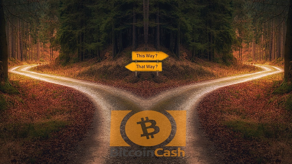 usuarios disputa nombre BCH