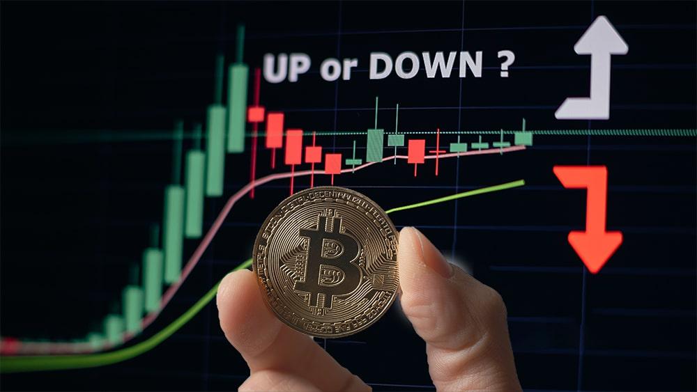 Mano sosteniendo moneda de Bitcoin frente a gráfico de mercado. Composición por CriptoNoticias. leungchopan / elements.envato.com; avanti_photo / elements.envato.com